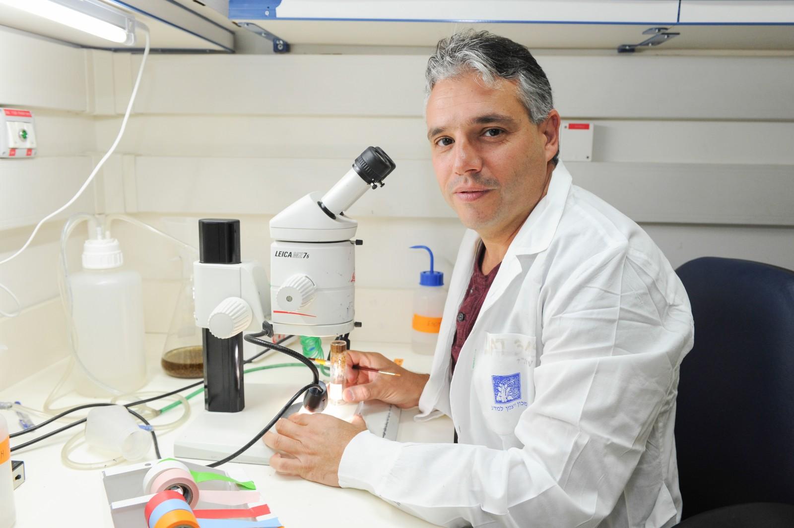Eli Arama